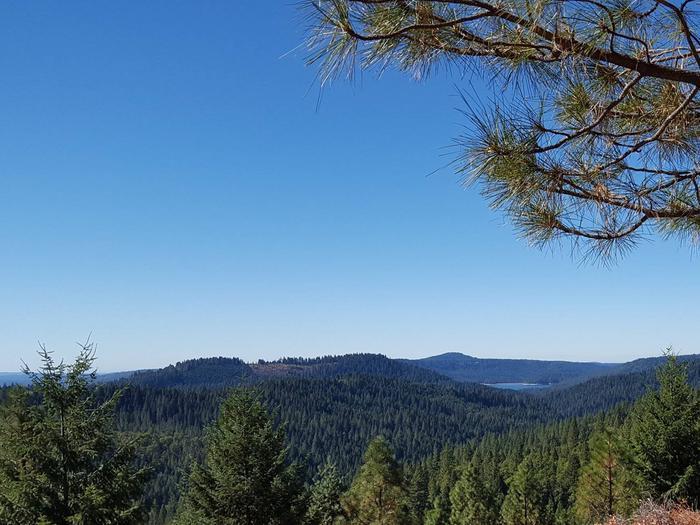 Pioneer TrailPioneer Trail near Skillman Campground