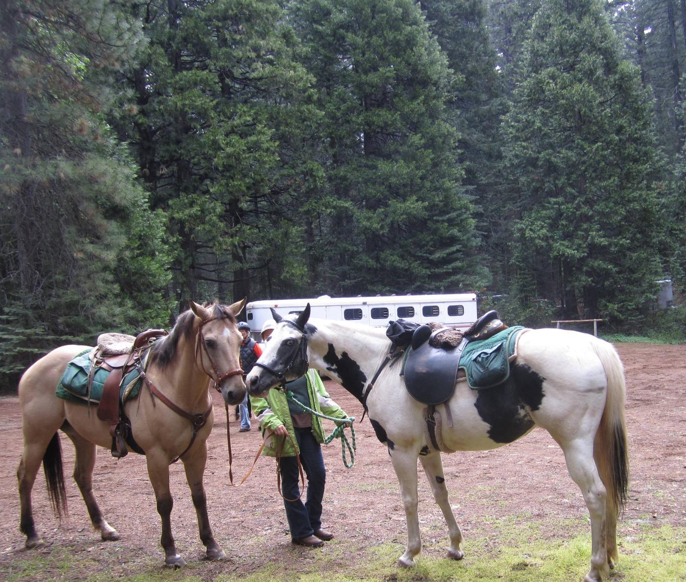 Skillman Campground