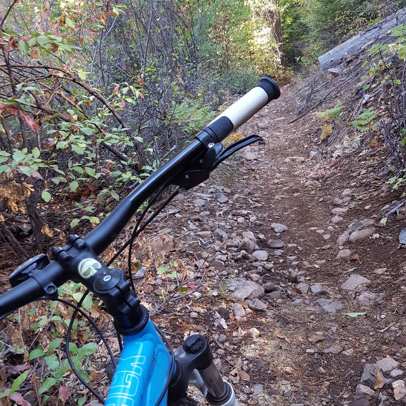 Hallelujah Trail