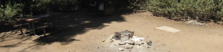 Site 168, partial shade