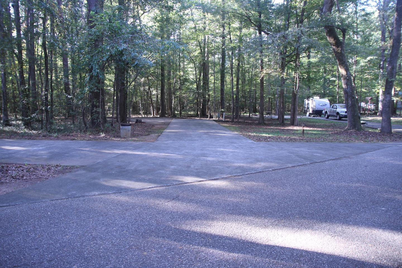 Site 54