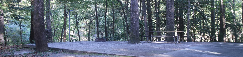 Site 12