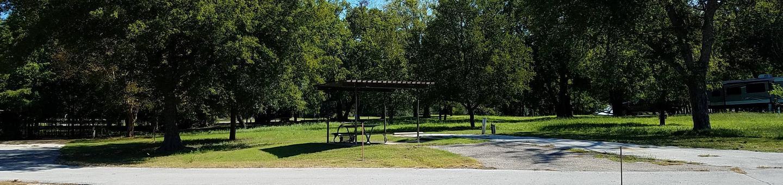 Site 8Campsite next to trees