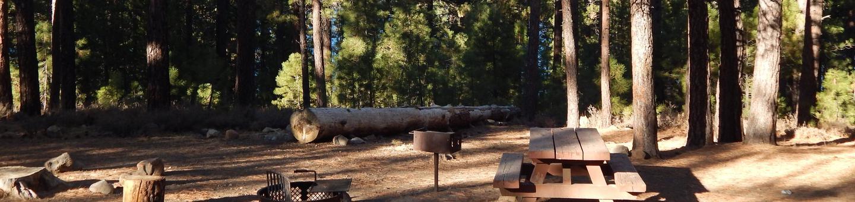 Logger #227