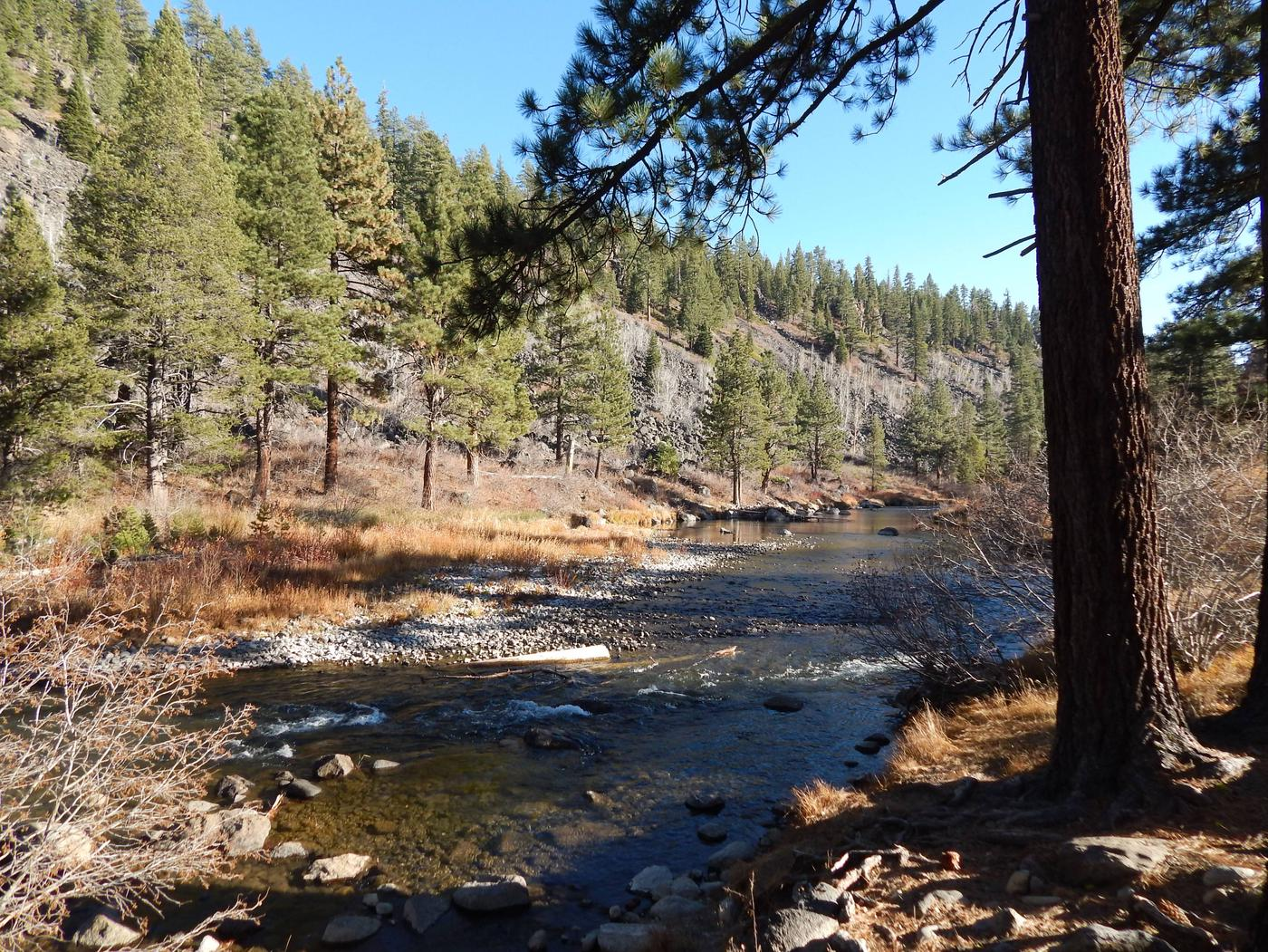 Goose Meadow Campground
