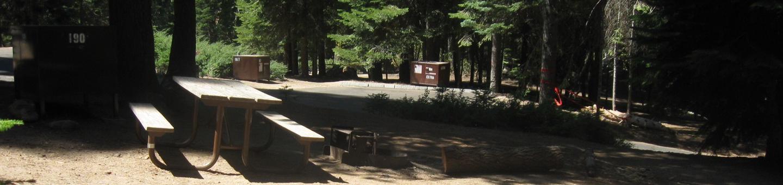 Site 190, partial shade