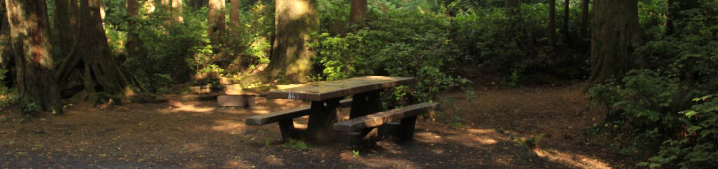 Picture of campsite with picnic table. Campsite A63