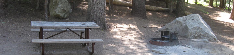 Site 207, partial shade
