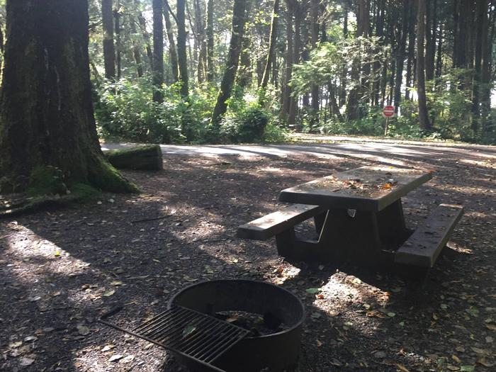 Picture of campsite with picnic tableCampsite A68