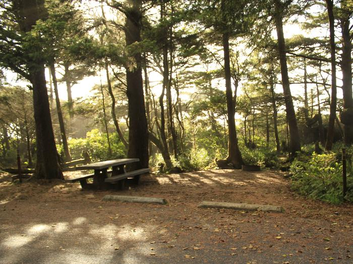 Picture of campsite with picnic table. Campsite B7