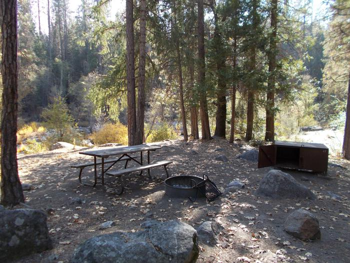 Food locker, picnic table, and fire ringSite 47