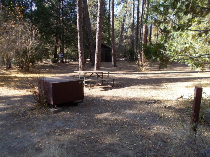 Food locker, picnic table, and fire ringSite 49