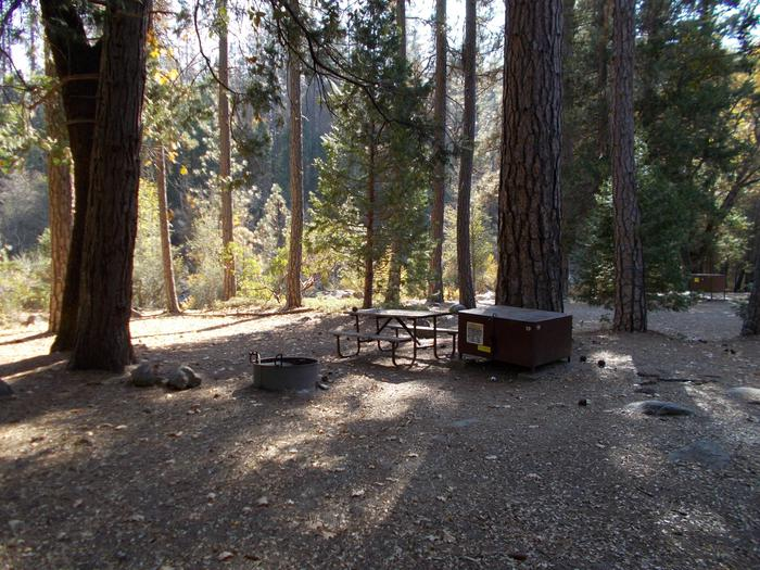 Food locker, picnic table, and fire ringSite 50