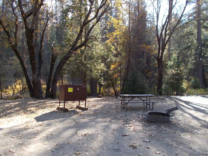 Food locker, picnic table, and fire ringSite 52