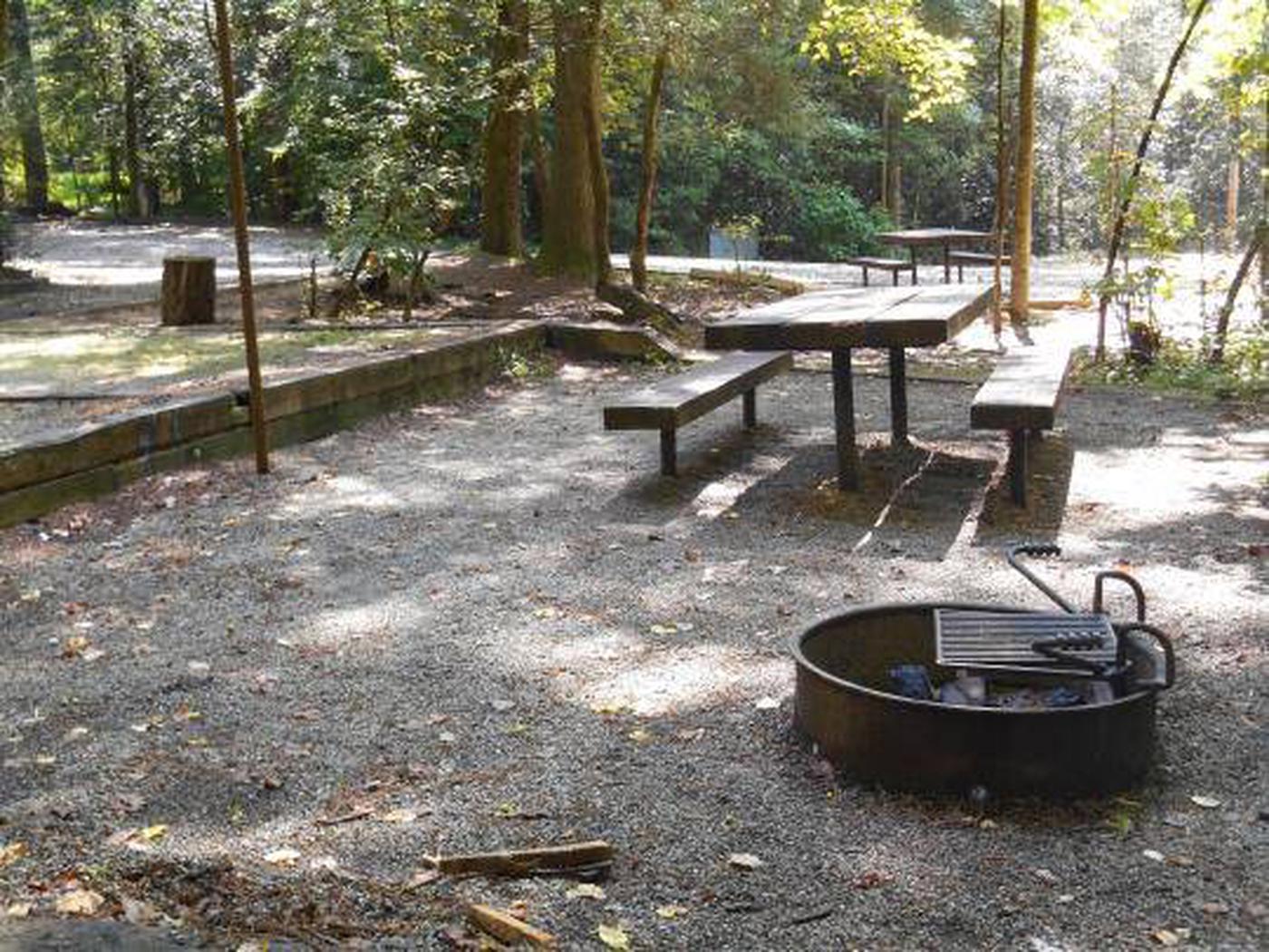 Willis Knob Horse Camp-Site 1-3