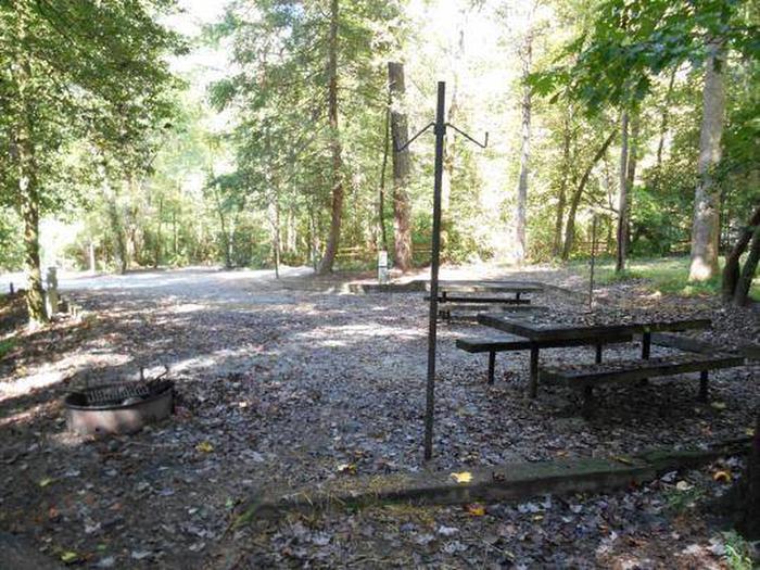 Willis Knob Horse Camp-Site 4-5