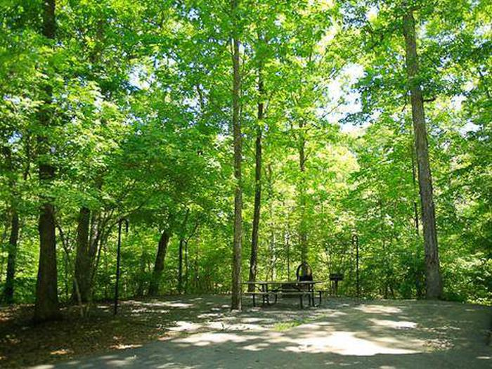 Arrowhead Campground-Site 008