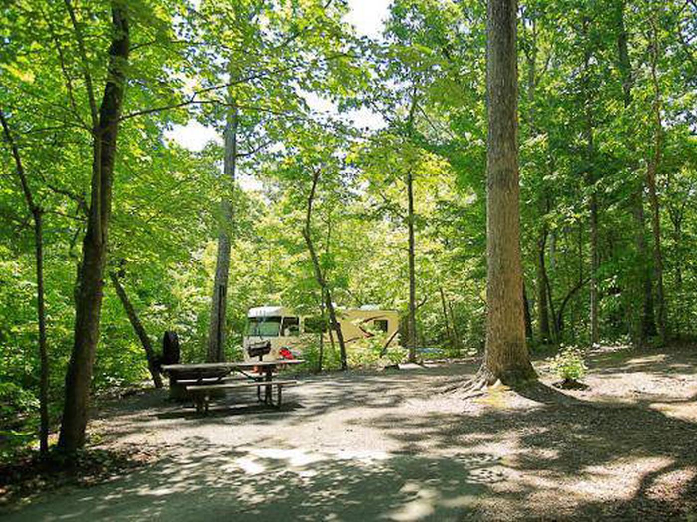 Arrowhead Campground-Site 009