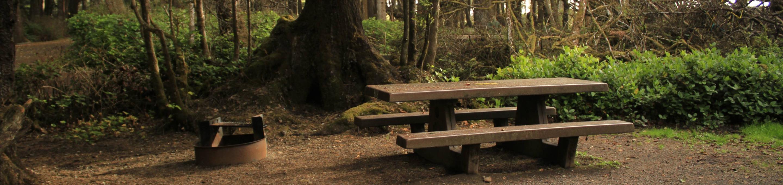 Picture of campsite with concrete picnic table. Campsite B12
