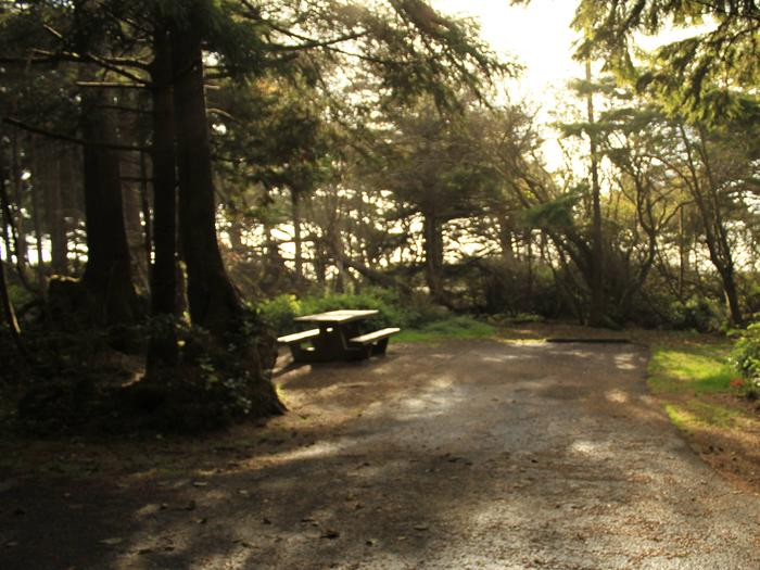 Picture of campsite with picnic tableCampsite B12