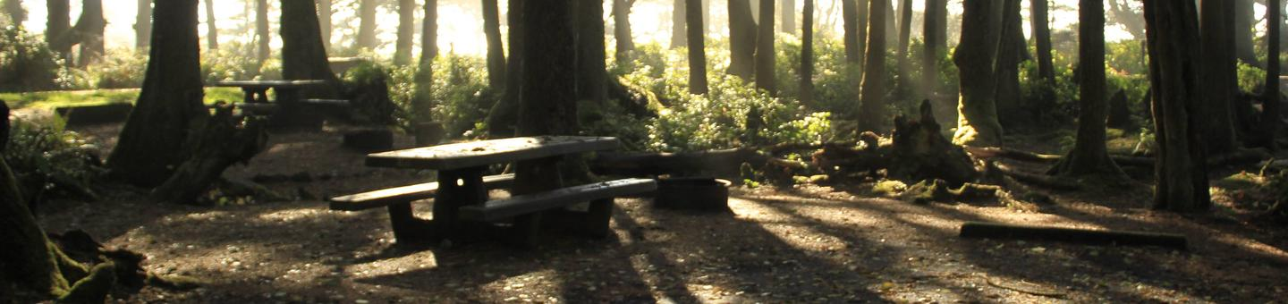 Picture of campsite with picnic tableCampsite B18
