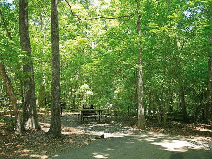 Arrowhead Campground-Site 028