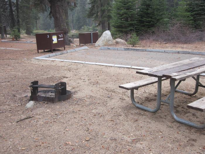 Site 3, Near Meadow and Restrooms, Afternoon Sun