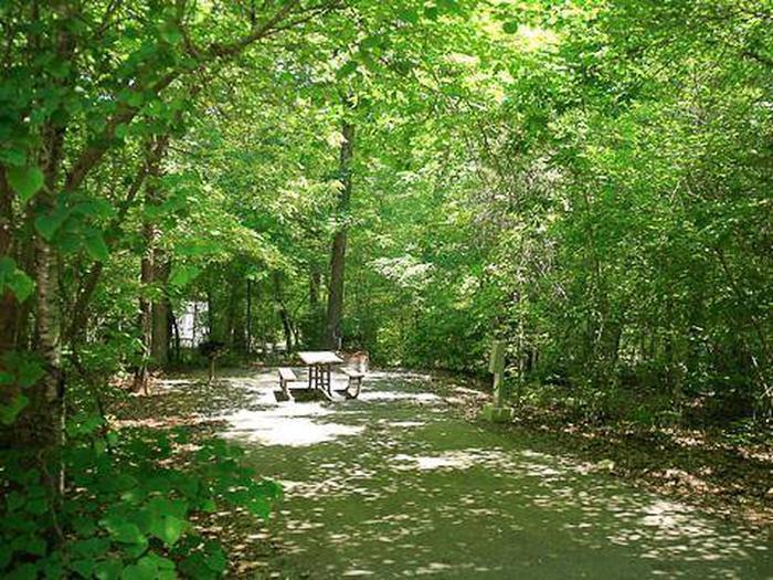 Arrowhead Campground-Site 032
