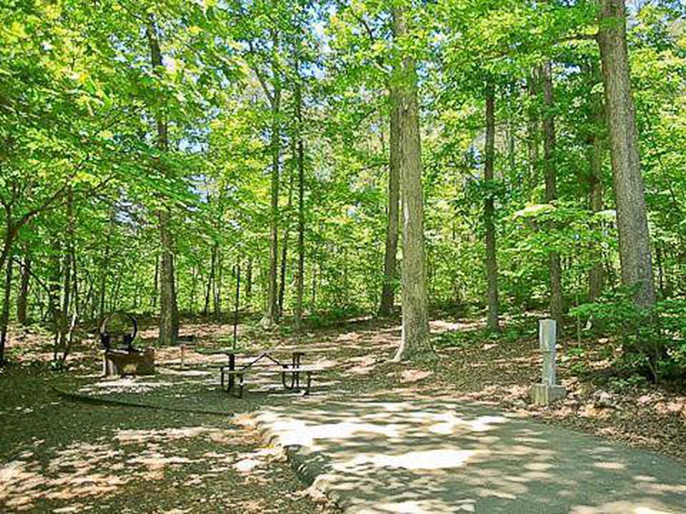 Arrowhead Campground-Site 038