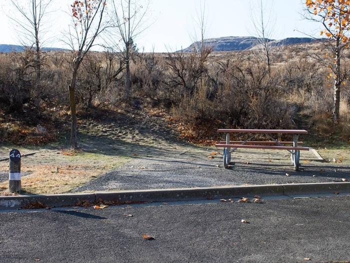 Back in paved parking with brush in brush in the background.Site 44