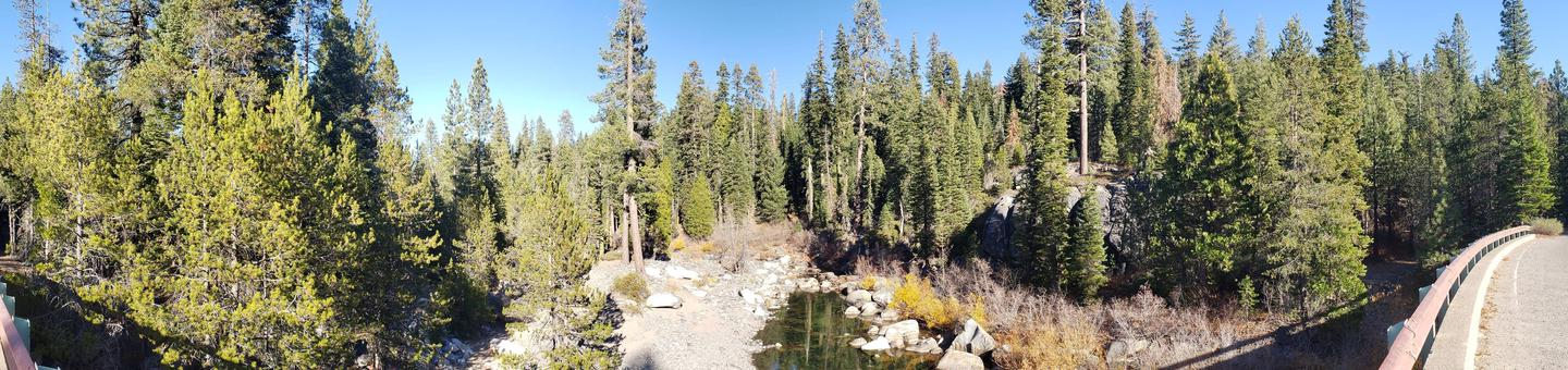 Headwaters of French Meadows Lake near Coyote group campgrounds.