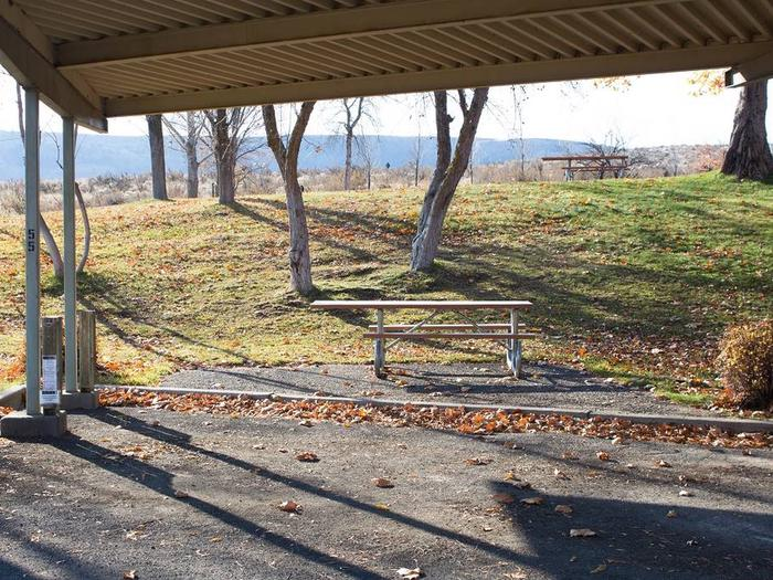"""Back in paved parking under a steel structure 10' 01"""" clearance.Site 55. No tents on the watered grass."""