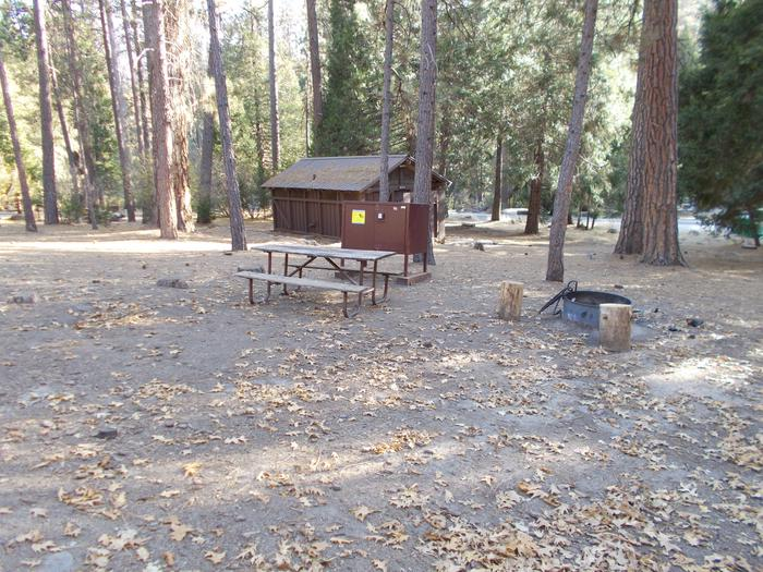 Food locker, picnic table, and fire ringSite 96