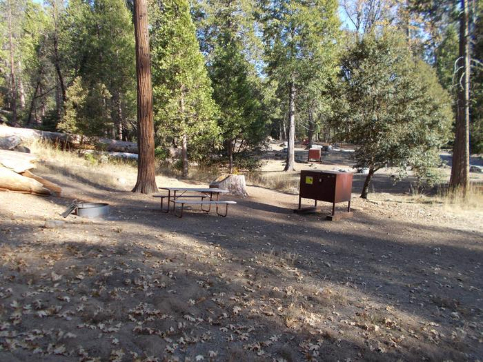 Food locker, picnic table, and fire ringSite 91
