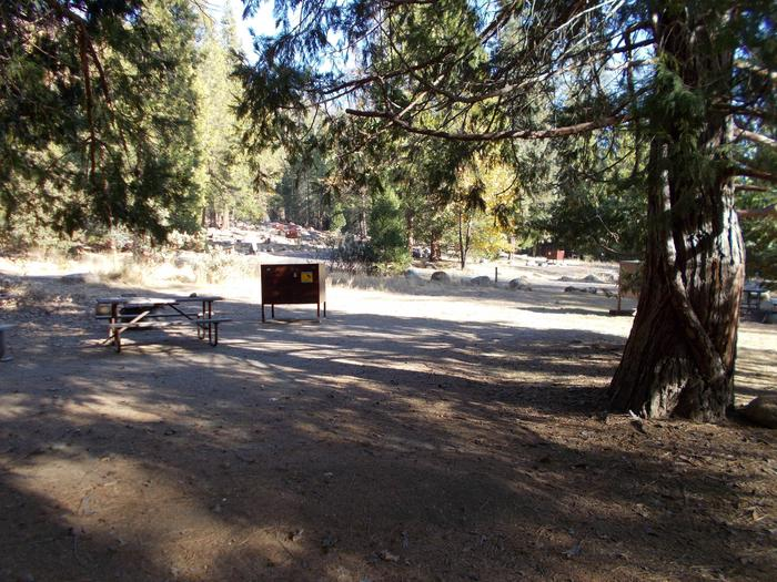 Food locker, picnic table, and fire ringSite 89