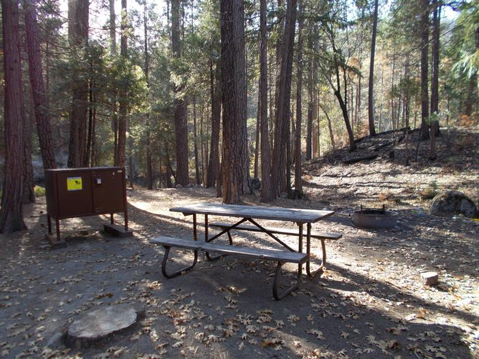 Food locker, picnic table, and fire ringSite 4
