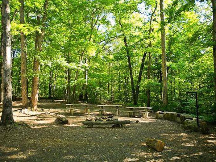 Badin Lake Group Camp-Site A