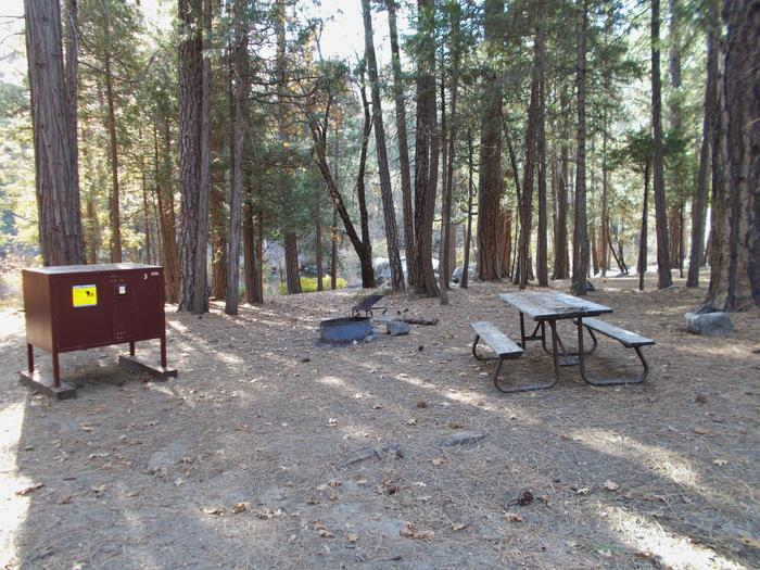 Food locker, picnic table, and fire ringSite 3