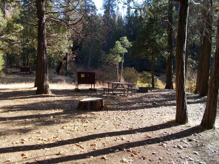Food locker, picnic table, and fire ringSite 1