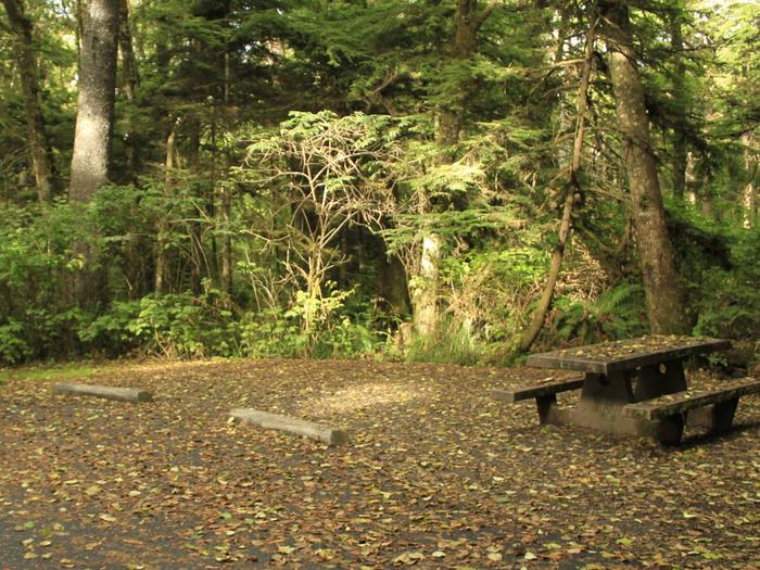Picture of campsite with picnic table Campsite C4