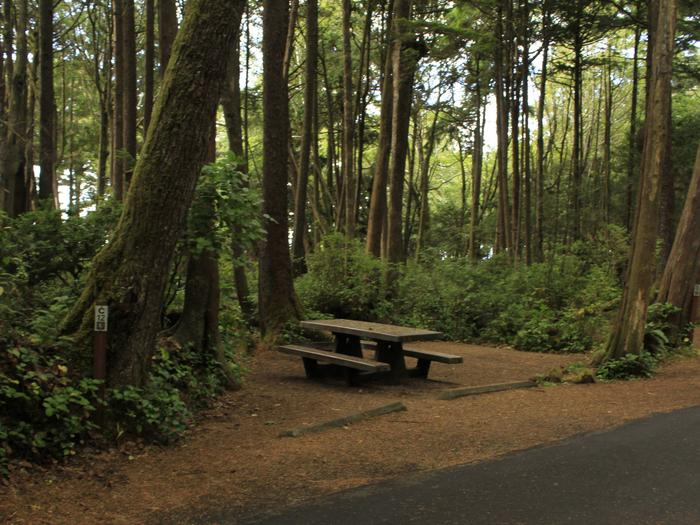 Picture of campsite with picnic tableCampsite C12