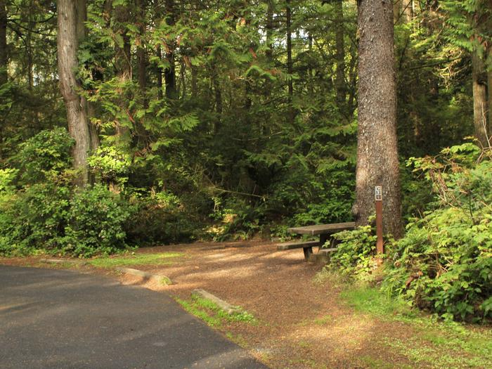 Picture of campsite with picnic tableCampsite C13
