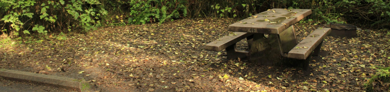 Picture of campsite and concrete picnic tableCampsite C19