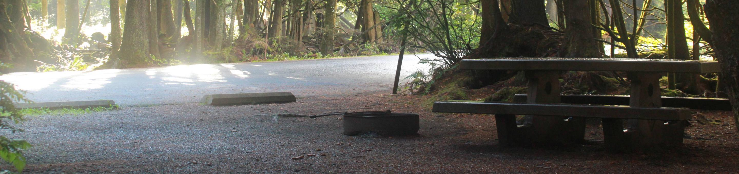 Picture of campsite with picnic table. Campsite D6