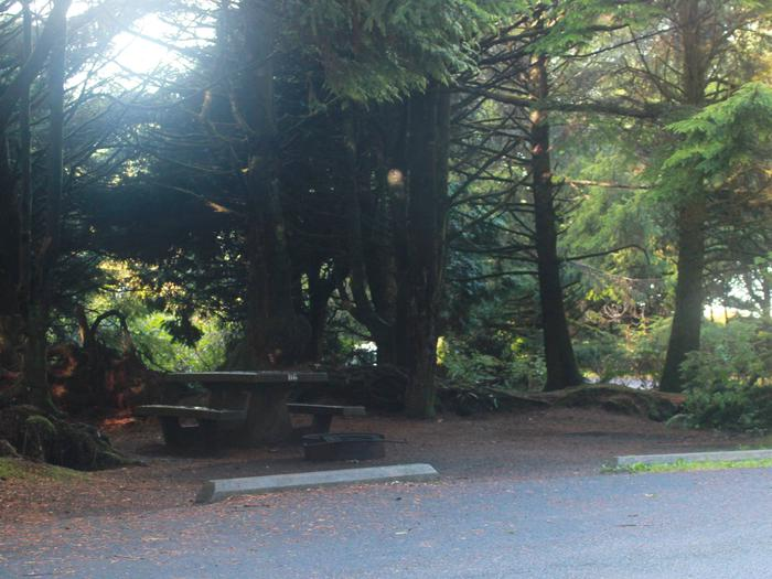 Picture of campsite with picnic tableCampsite D6