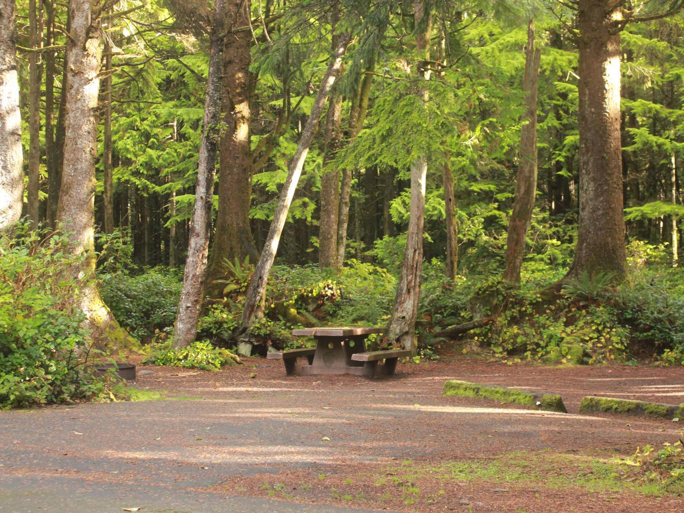 Picture of campsite with picnic tableCampsite D7
