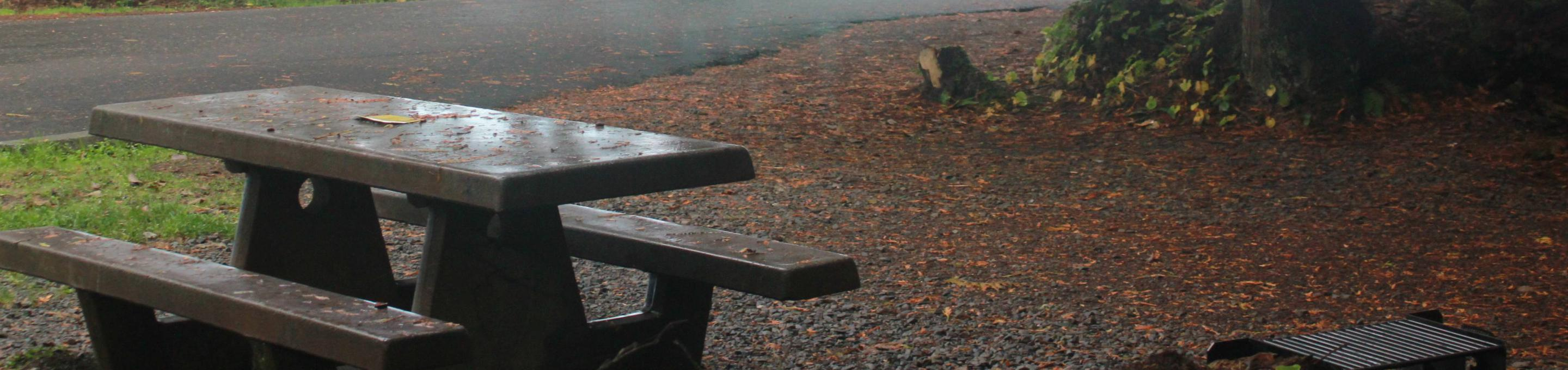 Picture of campsite with picnic table. Campsite D9