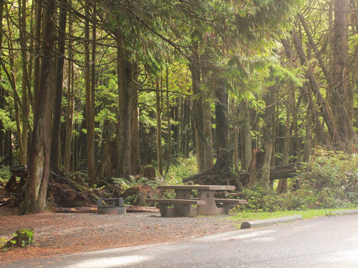 Picture of campsite with picnic tableCampsite D9