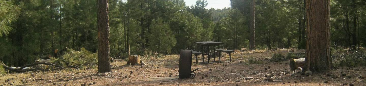 view of campsite 5 showing picnic table and fire ringSite 5, Black Canyon Rim Campground