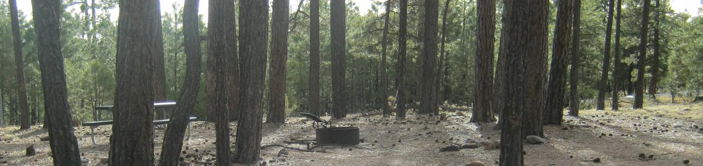 view of Black Canyon Rim Campground Site 6 showing picnic table and fire ringBlack Canyon Rim Campground Site 6